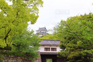 和歌山城と岡口門の写真・画像素材[2076704]