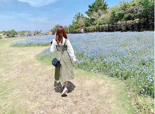 お花畑の写真・画像素材[2116254]