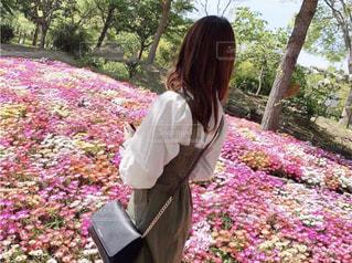 お花の写真・画像素材[2117531]