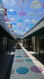 天気の傘の写真・画像素材[2078280]