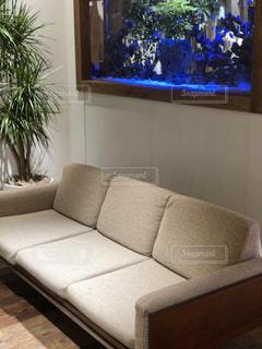 家具とフラットスクリーンテレビが備わるリビングルームの写真・画像素材[2184350]