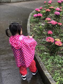 ピンクの花の小さな女の子が草の上に立っているの写真・画像素材[2234172]
