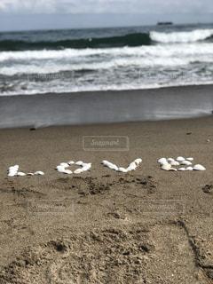 貝殻のラブの写真・画像素材[2237837]