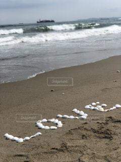 貝殻のラブの写真・画像素材[2237838]