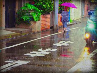 雨 - No.222533