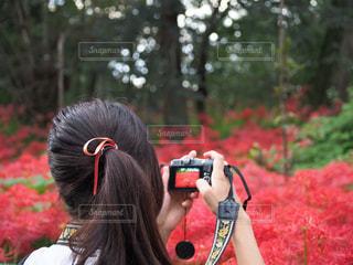 女性の写真・画像素材[227423]