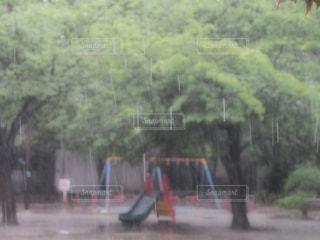 No.251218 風景