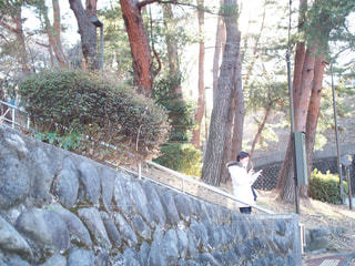 風景 - No.322049