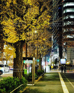 街の通りの写真・画像素材[1707042]