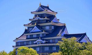 岡山城の写真・画像素材[2081257]