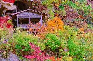 山寺の写真・画像素材[2081268]