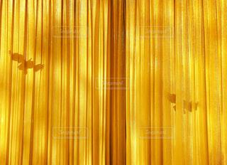 カーテン越しの鳥の写真・画像素材[2081426]