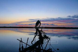美しい夜明けの写真・画像素材[2100583]