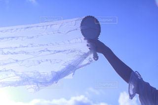 風に吹かれての写真・画像素材[2259516]