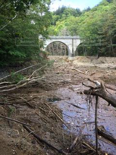 流木と川と鉄橋の写真・画像素材[2084419]