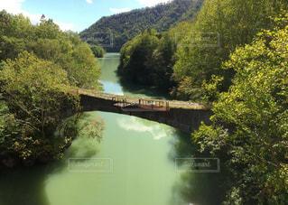 森の川に架かる橋の写真・画像素材[2084425]