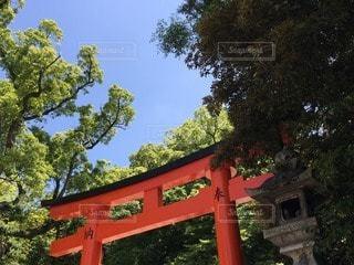 風景 - No.82653