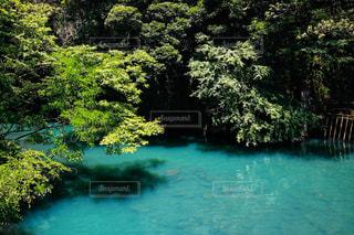 綺麗な川の写真・画像素材[2339625]