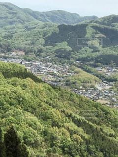 緑豊かな丘の中腹のクローズアップの写真・画像素材[2088718]