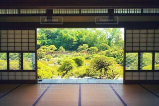 大きな窓の眺めの写真・画像素材[2336697]
