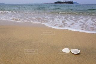 ビーチのクローズアップの写真・画像素材[3367136]