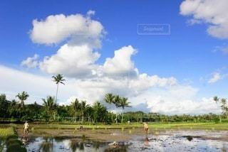 インドネシア風景の写真・画像素材[3381033]