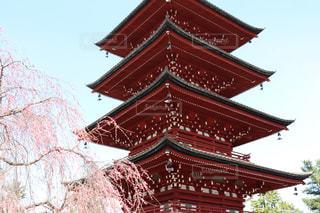 青森県弘前市 最勝院五重塔にて 4月の写真・画像素材[2089532]