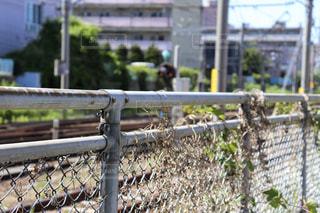 線路脇の古いフェンスの写真・画像素材[2164315]