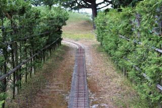 線路途中の緑のトンネルの写真・画像素材[2174928]