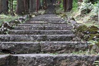 久渡寺へと続く長い石段の写真・画像素材[2210755]