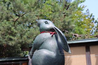 空を見つめるウサギの像の写真・画像素材[2233024]