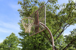 公園内のバスケットゴールの写真・画像素材[2277497]