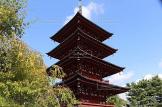 五重塔の境内の綺麗な風景写真の写真・画像素材[2490590]