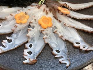タコの刺身の写真・画像素材[2090544]
