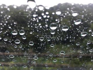 雨だれの写真・画像素材[2350102]