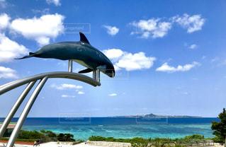 美ら海水族館の園内から見る海の写真・画像素材[2127361]