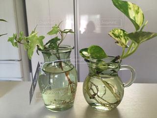 テーブルの上に座っている花で満たされた花瓶の写真・画像素材[2095886]