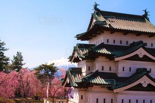 桜と岩木山と弘前城の写真・画像素材[2094891]