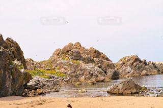 岩と海とウミネコの写真・画像素材[2095749]