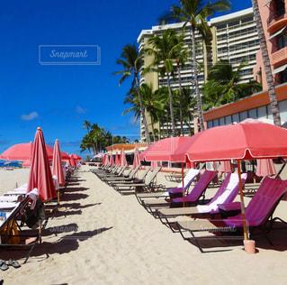 ハワイのビーチリゾート ピンクの写真・画像素材[126006]