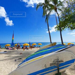 ビーチリゾート ハワイのビーチの写真・画像素材[597004]