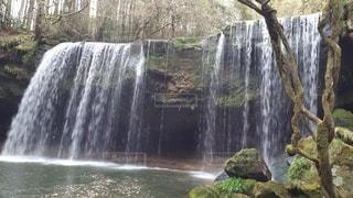 森の滝の写真・画像素材[2780901]