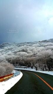 雪道の写真・画像素材[2843313]