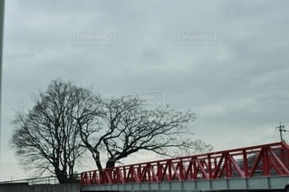 橋と木の写真・画像素材[2864876]