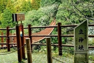 つり橋の写真・画像素材[2867251]