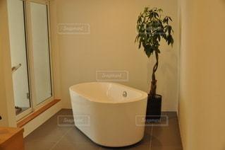バスルームの写真・画像素材[2885426]