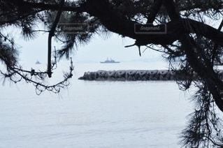 木々の合間に軍艦の写真・画像素材[2895125]