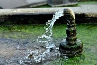 公園オブジェの写真・画像素材[2917449]