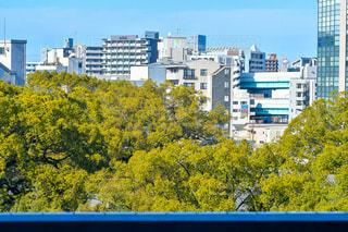 街並みin木々の写真・画像素材[2950178]