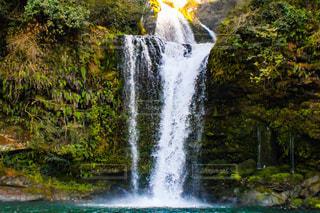 滝の写真・画像素材[2974592]